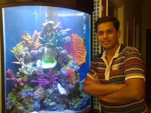 Nature Aquarium And Cylindrical Aquarium Manufacturer Prakash