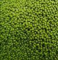 Organic Sabut Moong