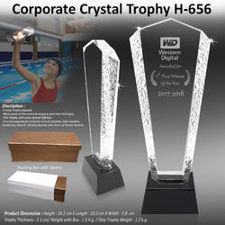 Corporate Crystal Trophy H-656