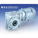 W Series Worm Gear Motor