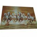 Ceramic Horse Printed Wall Tiles, Size: Medium , Packaging Type: Carton