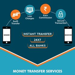 Domestic Money Remittance Service Provider