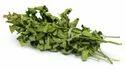 Dried Moringa Leaves  Whatsap 00919710439492