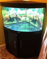 Teak Wood Corner Fish Tank, Size: 5 Feet