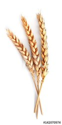 Vital Wheat Gluten, Packaging Type: Bag