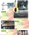 Carbonated Soda Soft Drink Production Line