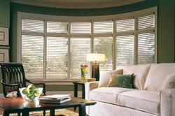 Window Blind Coverings