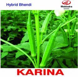 Samriddhi Karina Okra Bhindi Seeds, For Agriculture