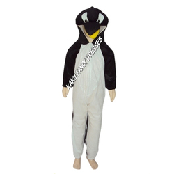 Kids Penguin Birds