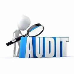 Consulting Firm One-Time HSE Auditing Service