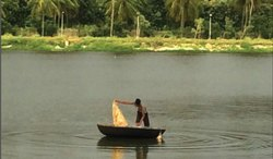 Lake Rejuvenation in Chennai