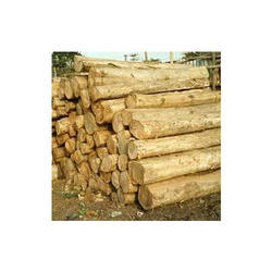 Sudan Teak Wood In Hyderabad Telangana Sudan Teak Wood