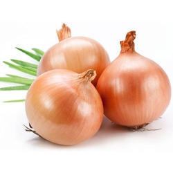 Onion Extract, Packaging Type: Pouch