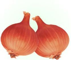 Poona Fursungi Adv Onion Seeds