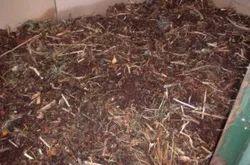Earthworm Vermicompost