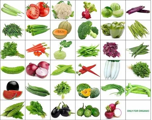 Hybrid and OP Vegetable Seeds 20 Types