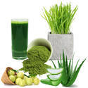 Wheat Grass Juice With Aloe Vera & Amla 1000ml.