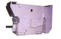 High Voltage AC Motors