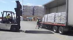 All kinds of  Trucks Loading Service