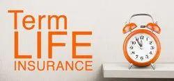 Term Insurance, 85 Years