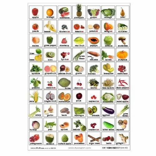 Plastic Fruit and Vegetable Chart, Rs 30 /piece N Qube ...
