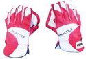 Cricket Century Wicket Keeping Gloves