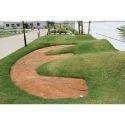 Lawn Development Services