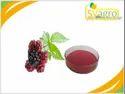 Elder Berry Extract