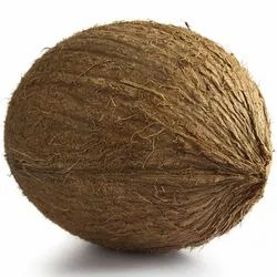 A Grade Solid Fresh Coconut, Coconut Size: Large