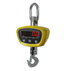 Electronic Crane Scale
