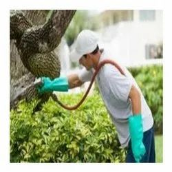 Organic Pest Control Services Provider in Kanpur