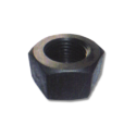 Hot Forged Nuts