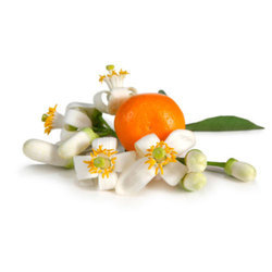 Orange Blossom Oils