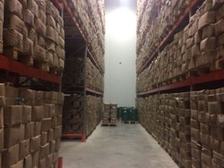 500 MT Commercial Cold Storage