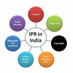 IPR Consultancy Services
