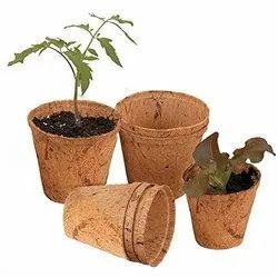 Coir Garden 6 Inch Round Coir Pot