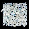 Natural Rainbow Moonstone Plain Cabochon