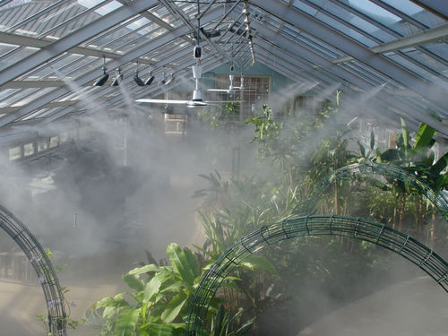 Greenhouse Humidification Fogging System Greenhouse