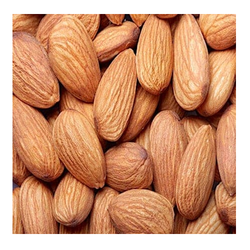 Almond Cold Storage Rental Services