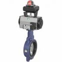 Rotex Actuated Butterfly Valve