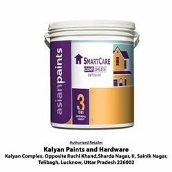 Asian Paints Smart Care Damp Sheath Exterior