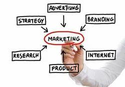 Business Management Solutions Services