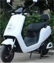Fiber Electric Bike, Vehicle Model: New