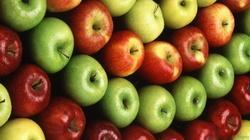 Apple Extract, Packaging Type: Hdpe Drum, Packaging Size: 10 Kg To 25 Kg