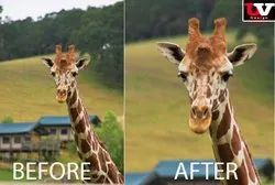 in Global Worldwide Image Cropping And Resizing service