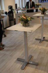 Linak Electric Height Adjustable Coffee Table - Mechatronics Control Equipments India Pvt