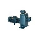 Cri Waste Water Pump, 110~240 V