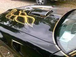 Car Custom Paint Service
