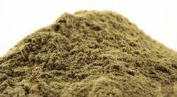 Vitex Negundo (Nirgundi) Extract Powder