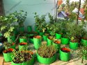 Balcony Plant Grow Bag